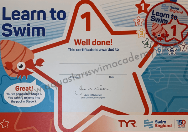 'Stage 1' Certificate & Badge 1