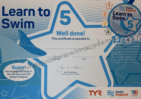 'Stage 5' Certificate & Badge 1