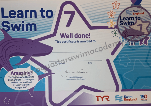 'Stage 7' Certificate & Badge 1