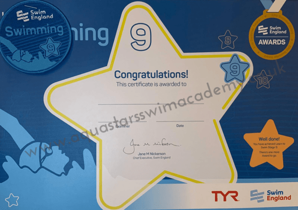 'Stage 9' Certificate & Badge 1